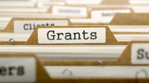 growing a nonprofit