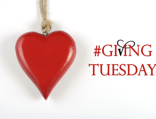 The Best of Giving Tuesday 2018