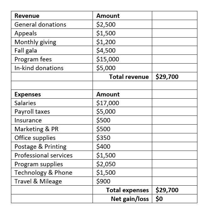nonprofit budgeting for dummies