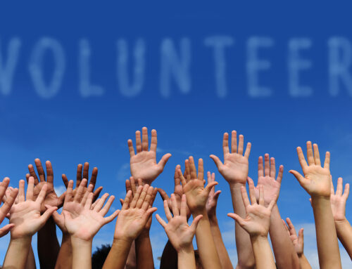 The New Nonprofit's Guide to Creating a Volunteer Program